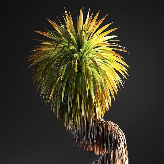 Bonsai tree 3D model | formats: MAX (VRay), FBX, OBJ | vol.1 - 16-1