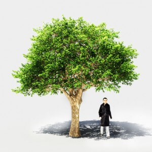 Rendering model's preview with references ( like human figure near tree )